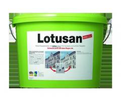Lotusan Самоочищающаяся краска с фотокаталитическим эффектом.