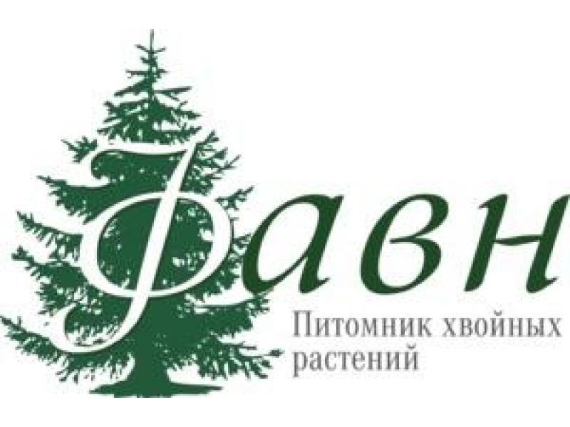 """Питомник хвойных растений """"Фавн"""" - 1/2"""