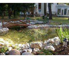 Строительство исскуственных водоемов