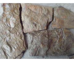 Камень Дракон природный песчаник натуральный пластушка